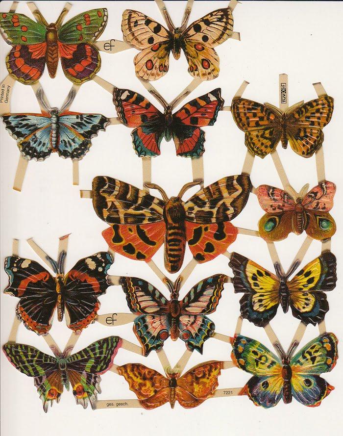 Butterfly Deutsch
