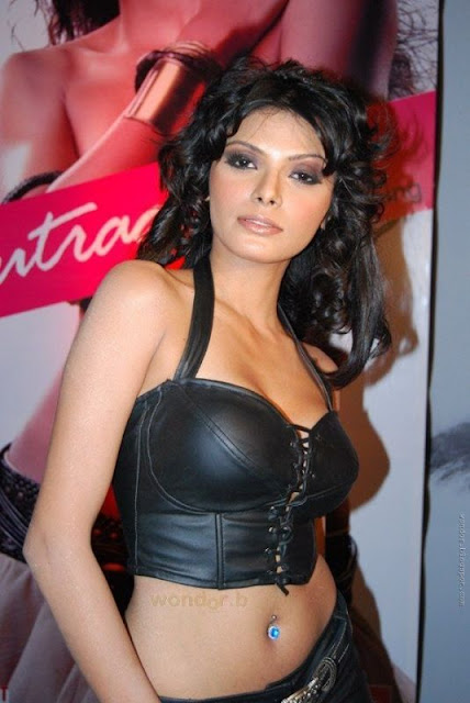 Bollywood Fan Mona Chopra Hot Photos In Bra And Without -4150