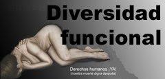 Enlace de acceso a Diversidad Funcional