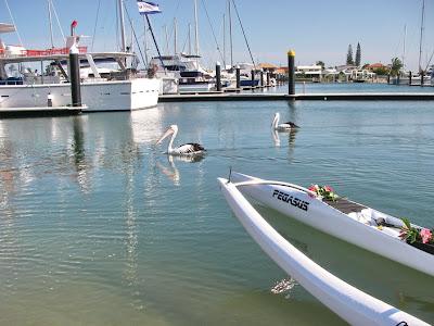 Rambos Locker Ocean Sports Video Blog: October 2007