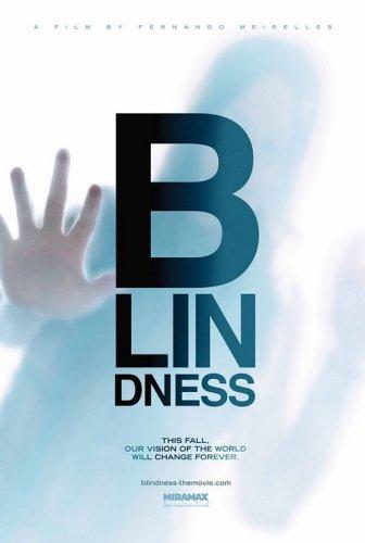 Baixar Filme Ensaio Sobre A Cegueira - Dublado