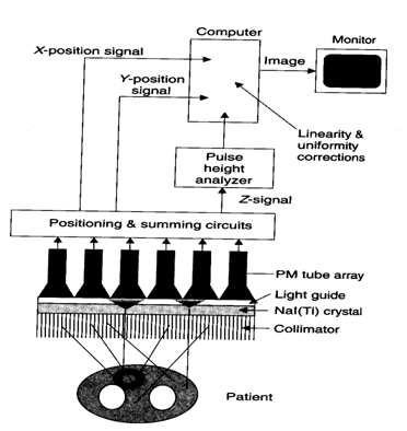 Biomedical Engineering (INSTRUMENTS): WORKING OF GAMMA CAMERA