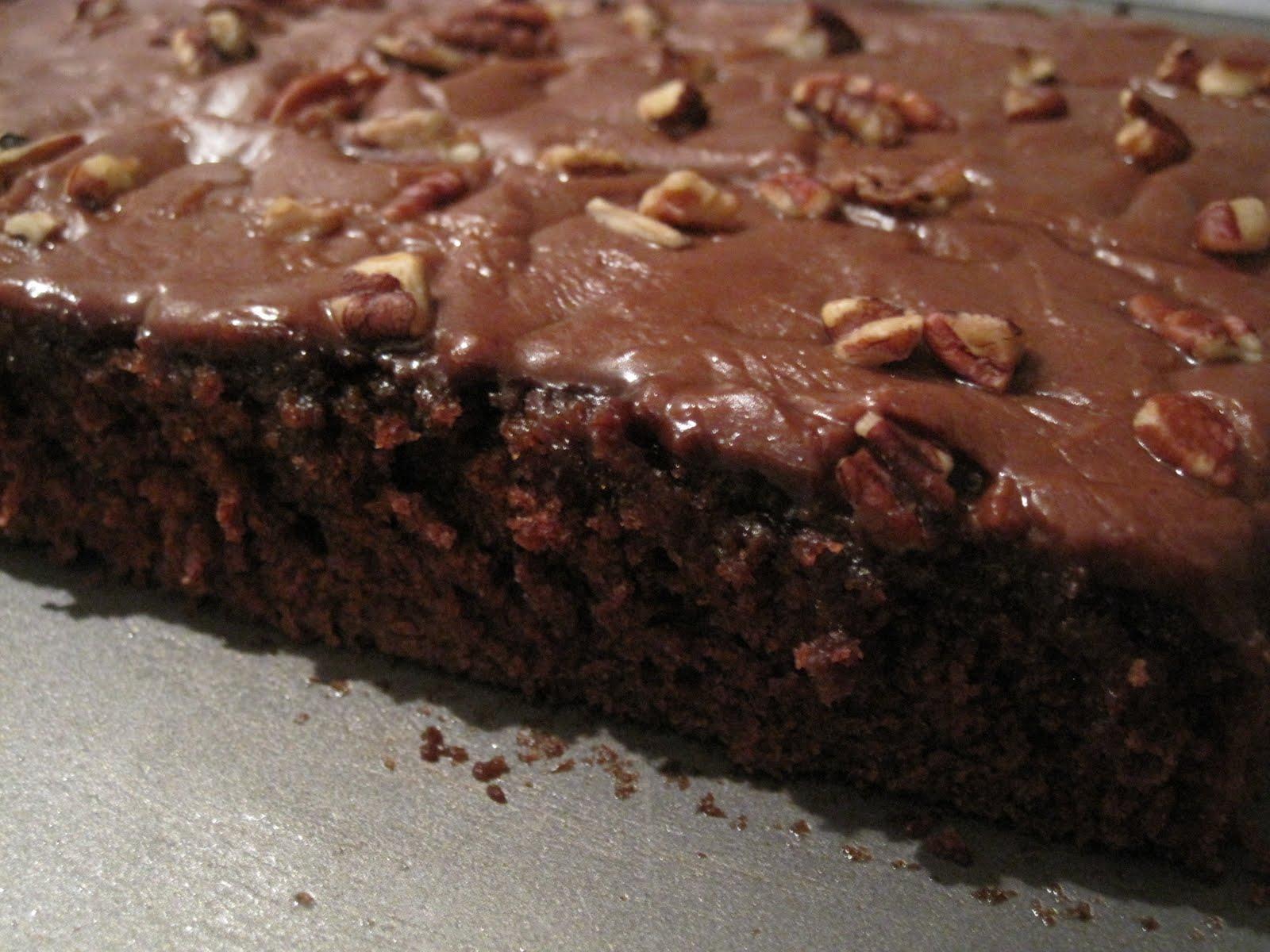 Texas Pecan Fudge Cake Recipe