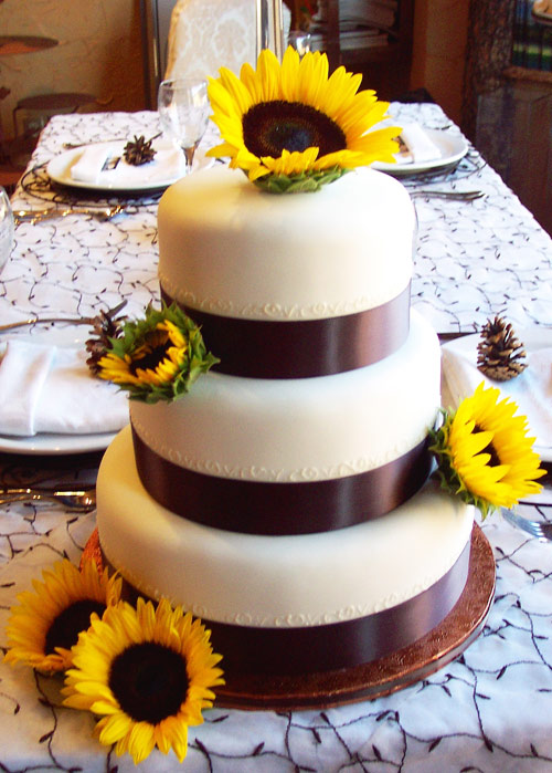 White wedding cake over three round tiers with wide black satin ribbon and