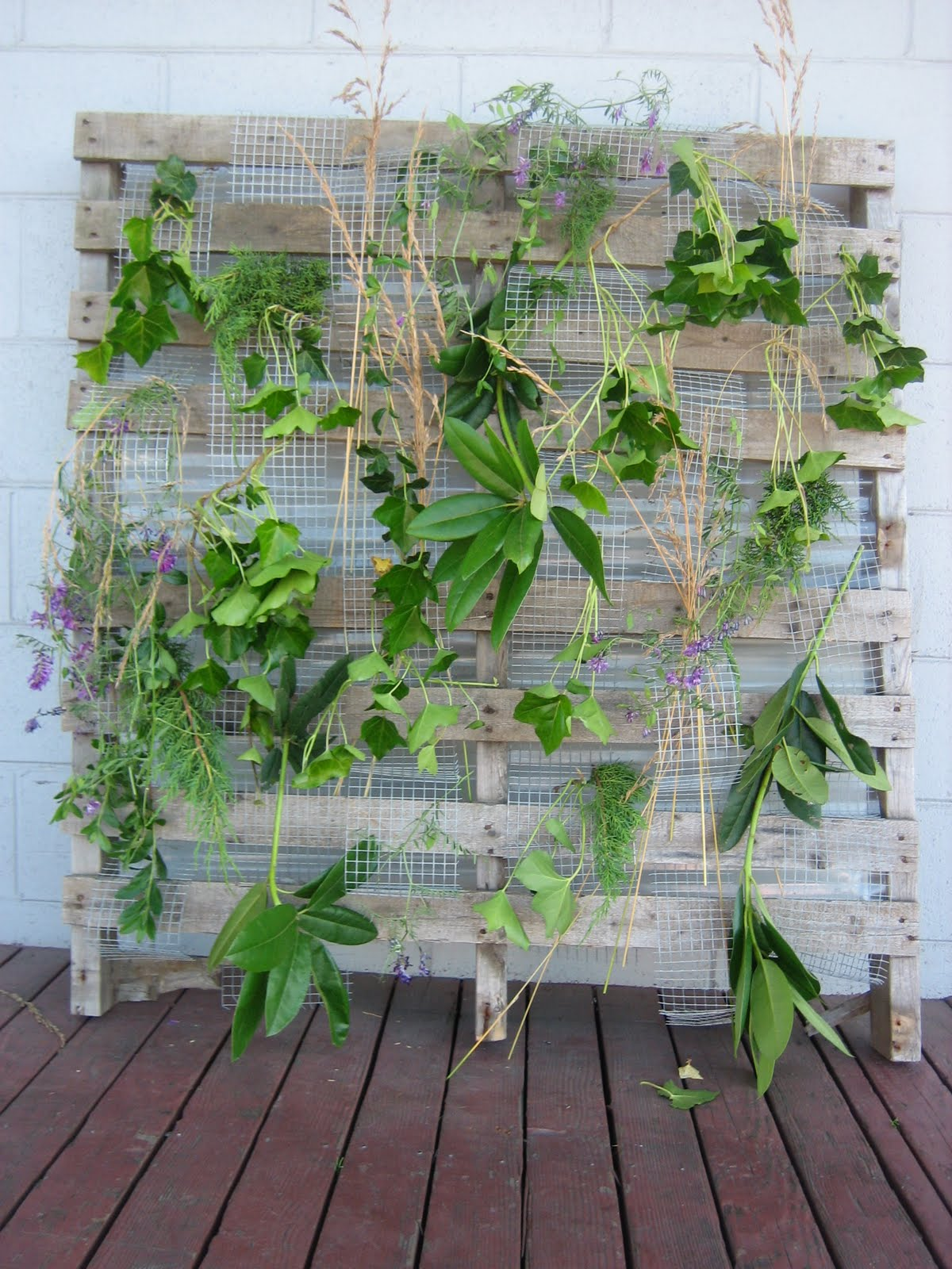 Horticultural Building Systems Quot Living Wall Trellis