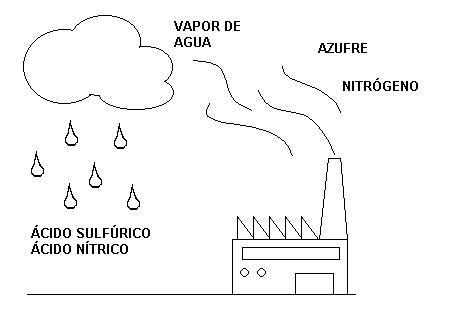 el medio ambiente en nuestro entorno