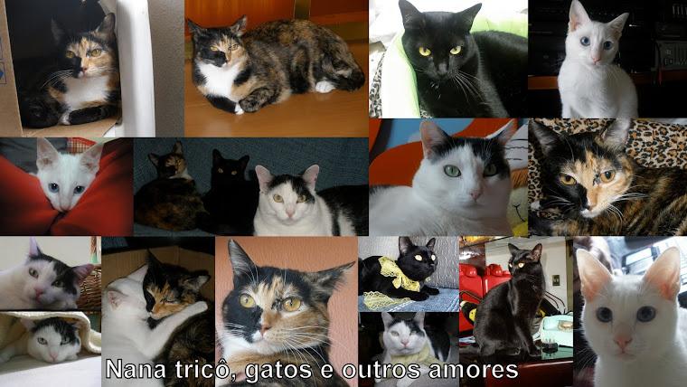 93d133f7ba NANA trico, gatos e outros amores
