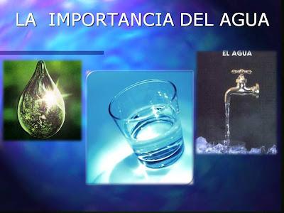 Importancia del agua pdf to jpg