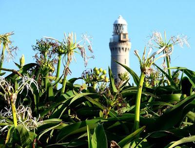 Tsunoshima Lighthouse, designed by Scot Richard Henry Burton and built in 1876.