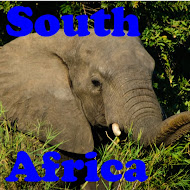 South Africa Trip