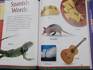 Mrs. Yollis\u0026#39; Classroom Blog: Learn Spanish! \u00a1Aprender Espa\u00f1ol!