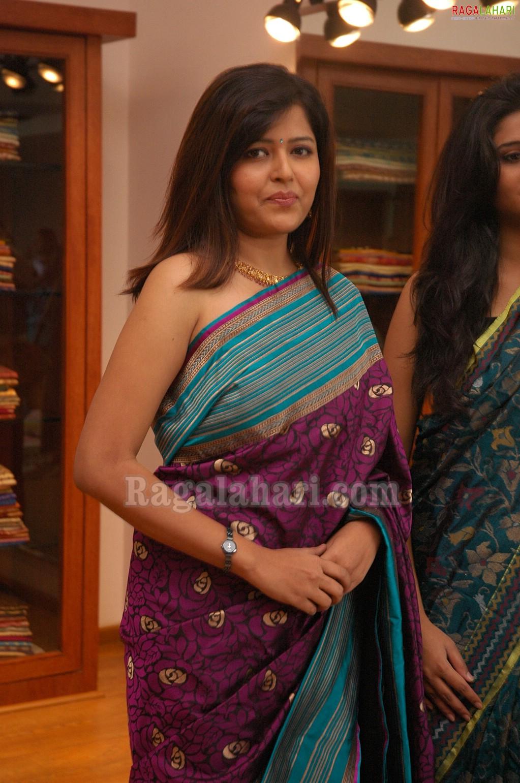 Hot Indian Mallu Actress Model Geeta Sexy In Saree-8627
