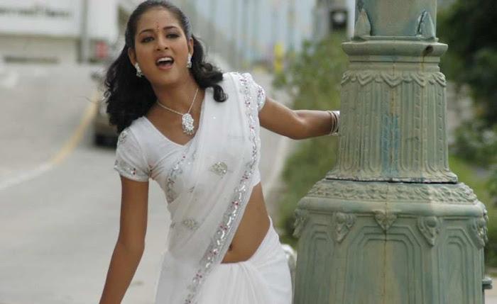 vidisha vawal in saree glamour  images