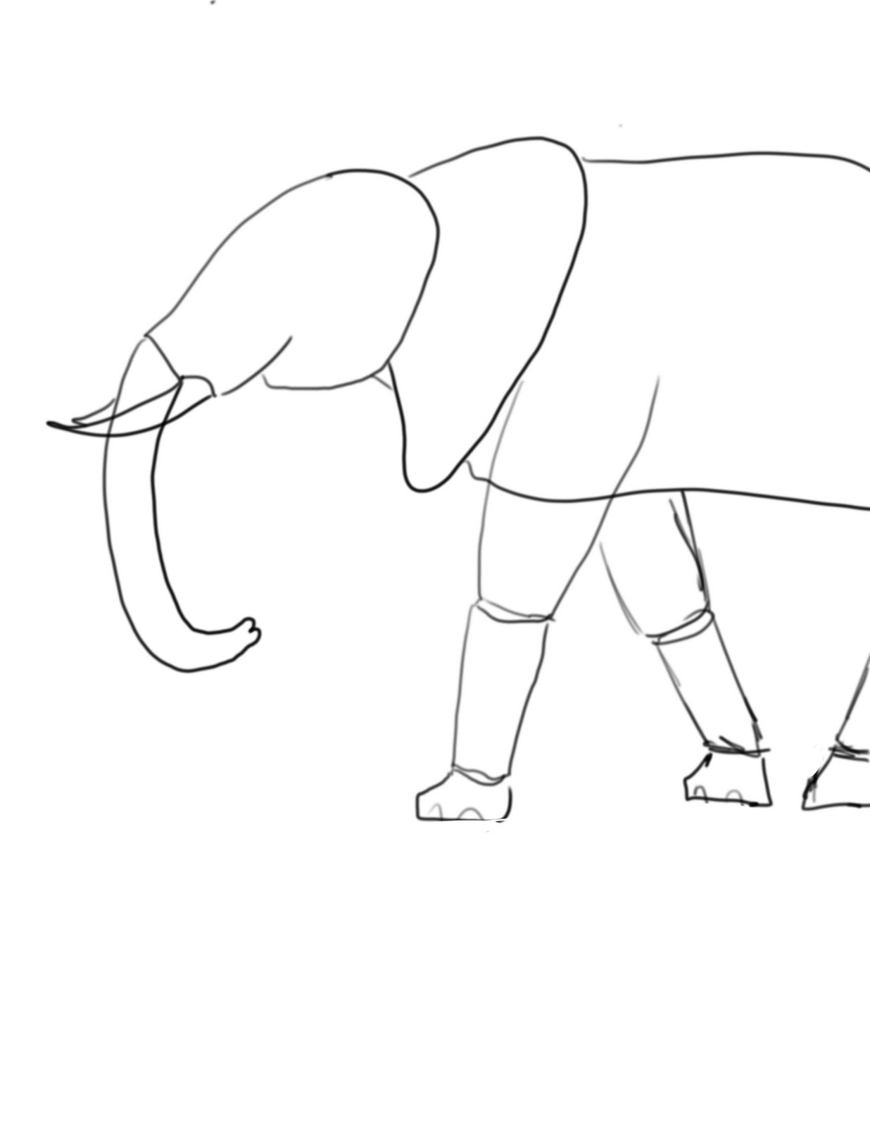 Ashby Animation Understanding The Basic Shapes Of An Elephant