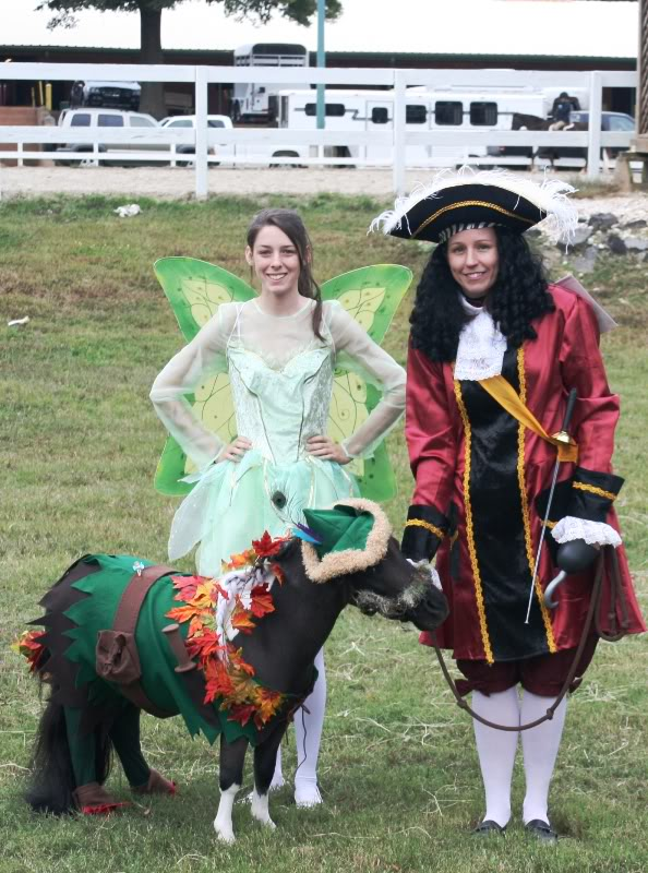ab9e26d2e Horse Costumes For Horses & Horse Fancy Dress Ideas Tiger Costume ...