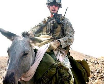 War+Donkeys+in+Afghanistan+02.jpg