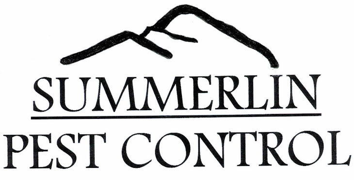 Summerlin Pest Control