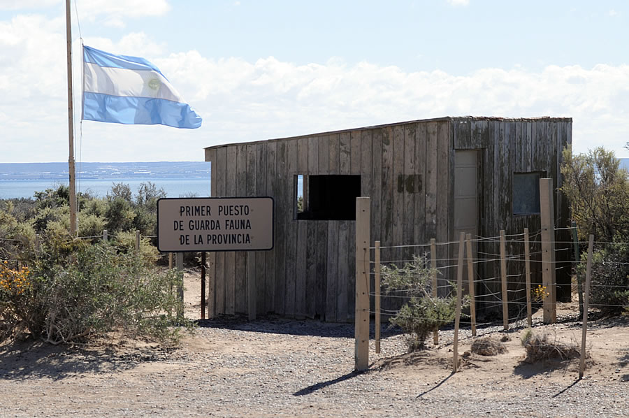 Punta Loma the first provincial animal reserve in Puerto Madryn