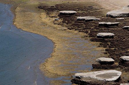 Marea Baja en las Playas de Puerto Pirámides Península Valdés