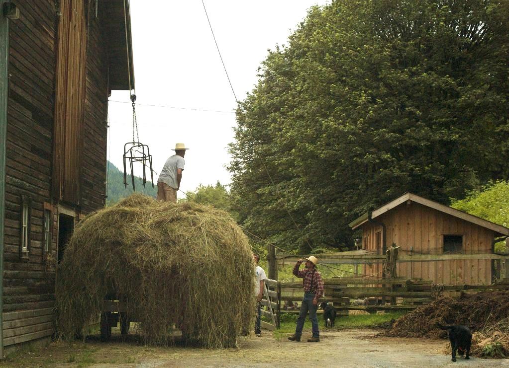 Littlefield Farm Web Log: Loading Up the Barn