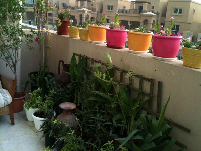 Garden Nursery Near Me Photograph | plant nurseries in warsa