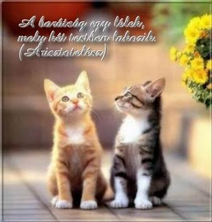baráti idézetek versek versek és idézetek: Barátság