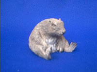 groundhog figurine sandicast