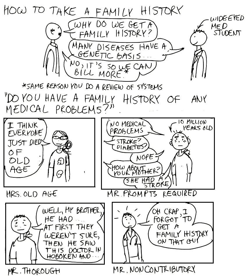 A Cartoon Guide to Becoming a Doctor: How to take a family
