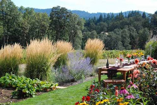 Penner Ash Winery Oregon Wine Country