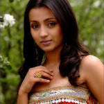 Southindian Hot Actress Trisha Sexy Pictures