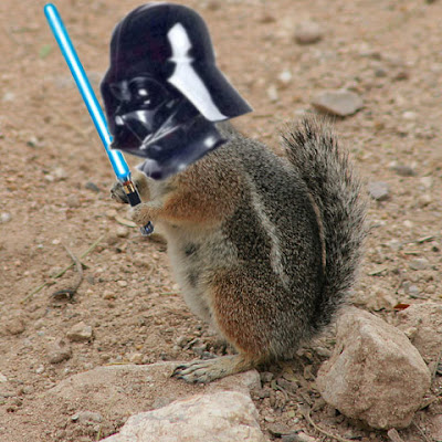 Les Rumeurs - Page 2 Darth+Squirrel