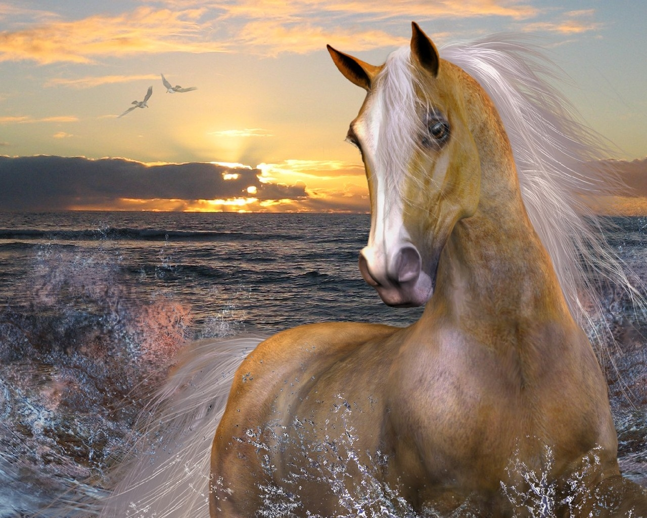 free horse screensavers and - photo #7