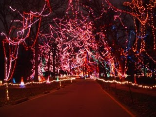 Tilles Park Christmas Lights.Thoughts And Musings 25 Days Of Christmas Day 8 Tilles Park