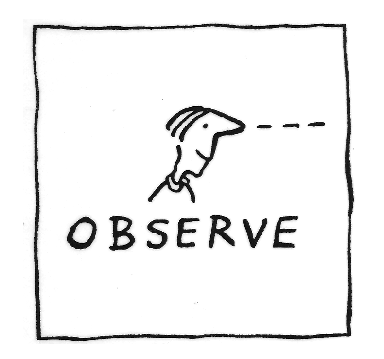 Observe Definition