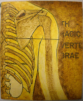 A yellow-toned illustration of the bones of the ribcage and shoulder.