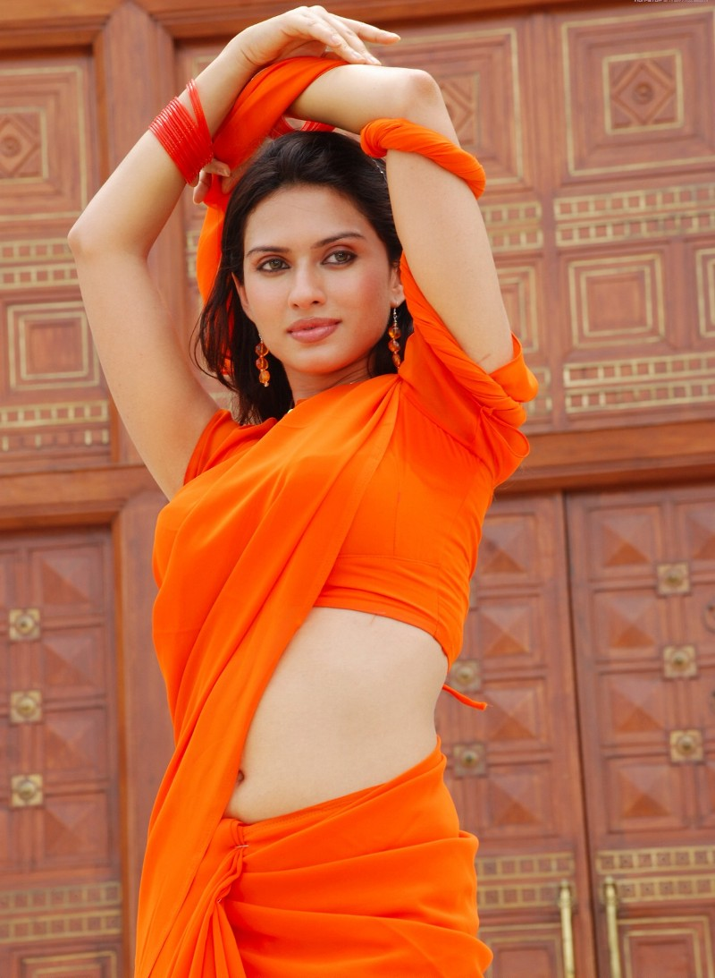 hot-figer-in-saree