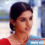 South Sexy Masala Actress Asin Hot Pictures