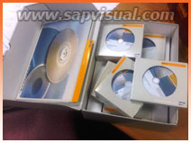 [SAP BOX PACKAGE]