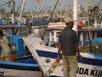 Fishing trawlers at Malpe Port(5 Kms from Udipi)