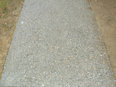 Exposed Aggregate Concrete Walkway Home Construction Improvement