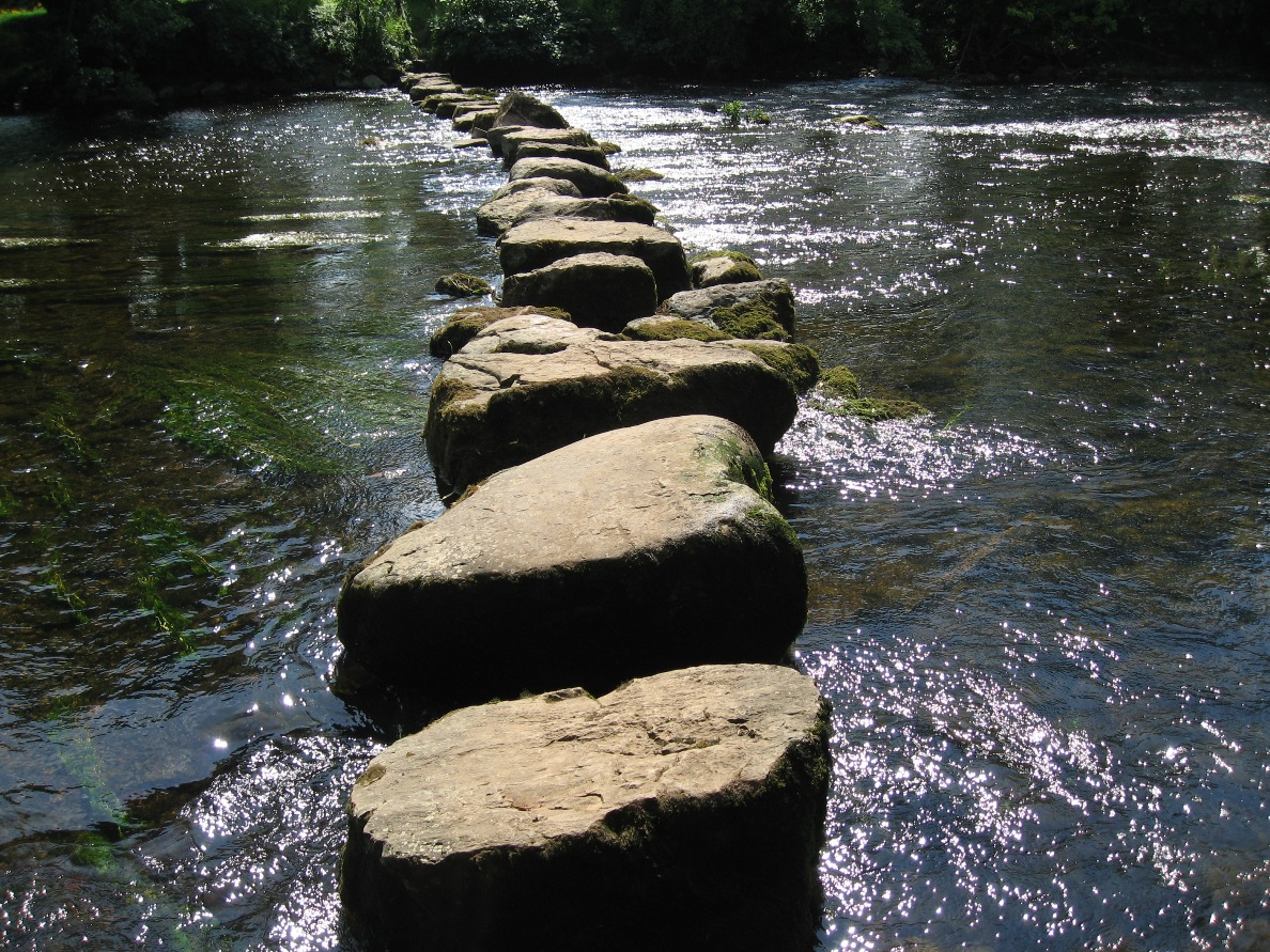 Granite Stepping Stones : Living with kennedy s disease pain another stepping stone