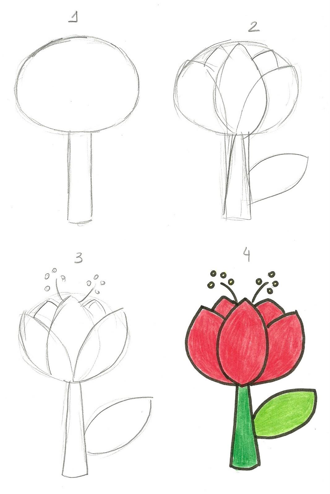 Como Desenhar Uma Flor Passo A Passo