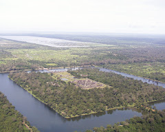 Angkor Wat View From Top