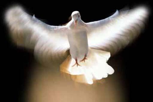 Clamor ao Espírito de Deus