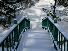 Across the Bridge in Winter