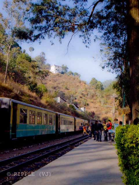 Long Wait time of Shimla-Kalka Toy Train gives enough time to appriciate the beauty of Himachal Pradesh: Posted by VJ on PHOTO JOURNEY @ www.travellingcamera.com : VJ, ripple, Vijay Kumar Sharma, ripple4photography, Frozen Moments, photographs, Photography, ripple (VJ), VJ, Ripple (VJ) Photography, VJ-Photography, Capture Present for Future, Freeze Present for Future, ripple (VJ) Photographs , VJ Photographs, Ripple (VJ) Photography : Other Passengers waiting for other train to pass @  Sonwara Station