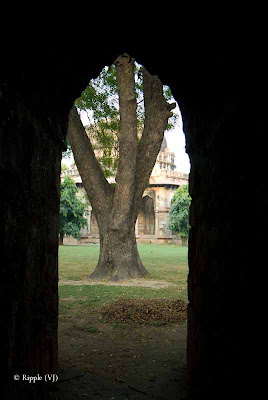 Posted by Ripple (VJ) : A visit to Lodhi Garden, Delhi, INDIA :: Narrow view of the Tomb of Mohammed Shah @ Lodhi Garden