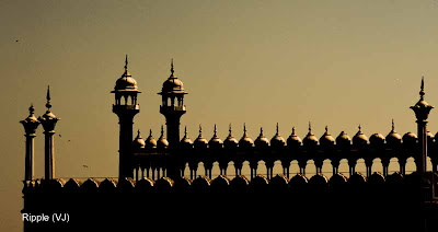 Posted by Ripple (VJ) : Delhi 6 - Jama Masjid : Domes and Pillars that have withstood the test of time since the 17th Century