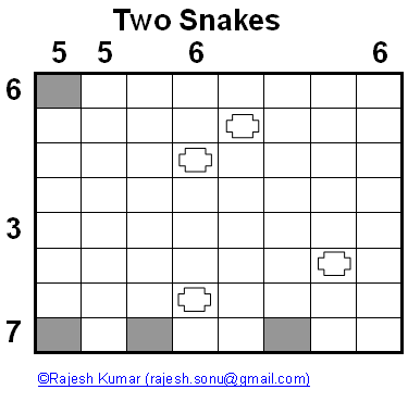 Logic Puzzles: Two Snakes