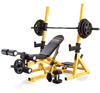 lifefitnesstreadmills bodybuilding equipment